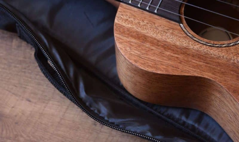 Donner ukulele gig bag close-up
