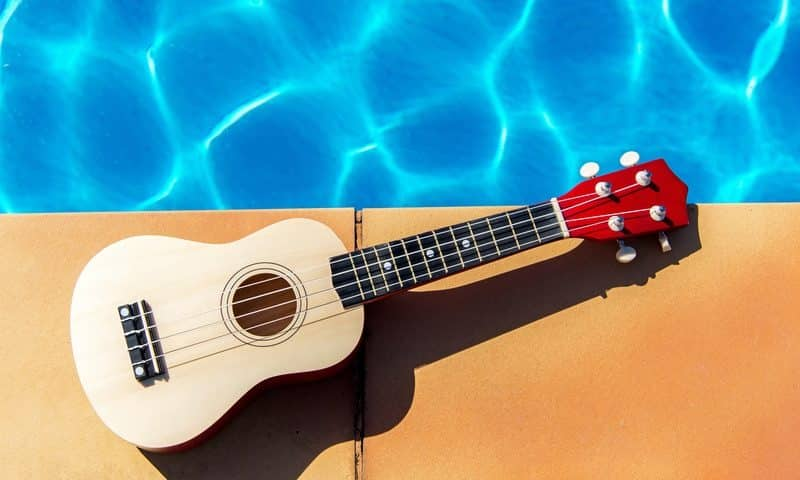 Ukulele Price Guide: How Much Do Ukuleles Cost? (2019 Edition)